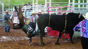 Fenoglio Bullfest 2019
